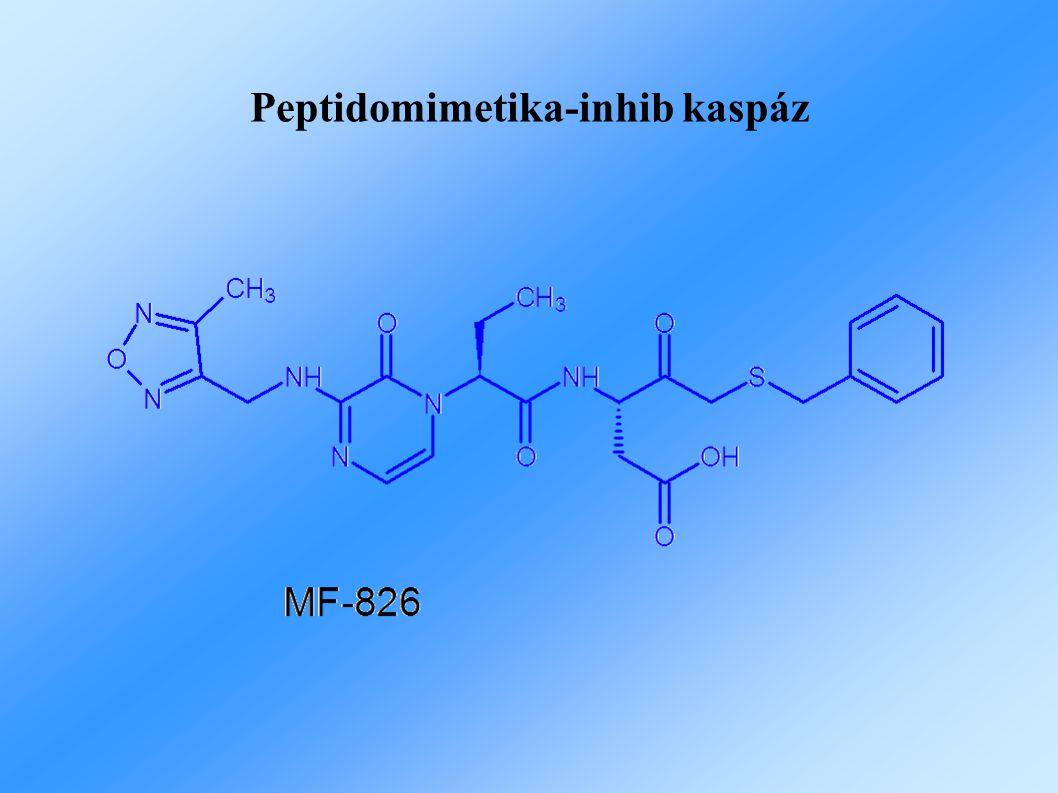 Peptidomimetika-inhib kaspáz