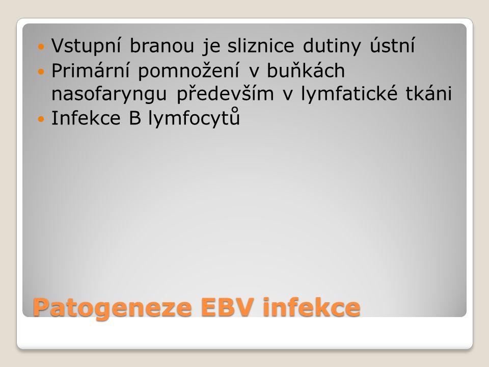 Patogeneze EBV infekce  Vstupní branou je sliznice dutiny ústní  Primární pomnožení v buňkách nasofaryngu především v lymfatické tkáni  Infekce B l