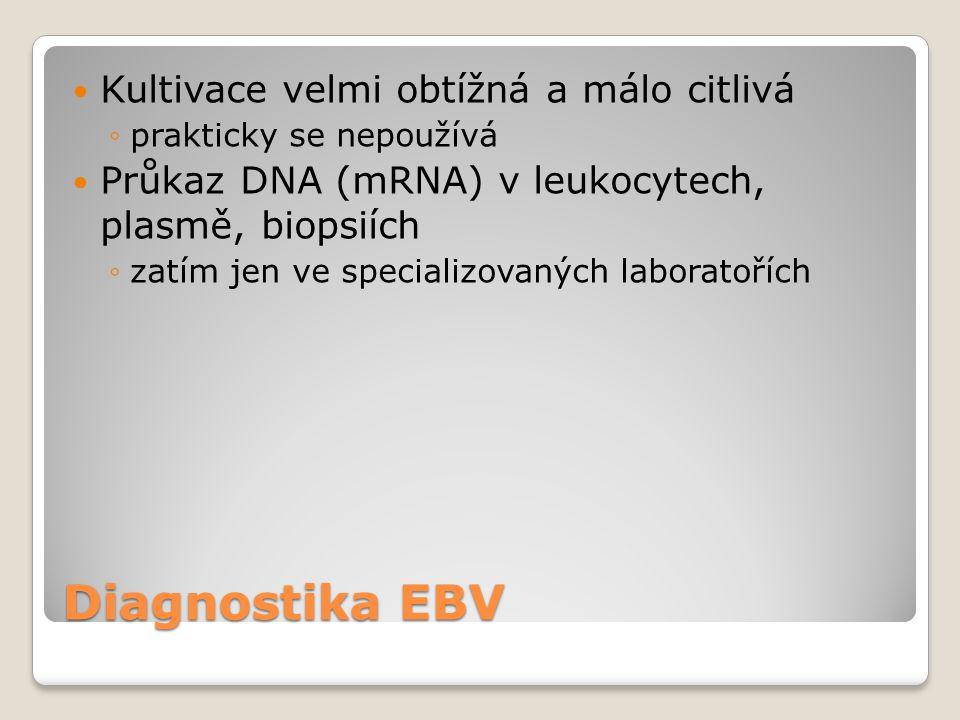 Diagnostika EBV  Kultivace velmi obtížná a málo citlivá ◦prakticky se nepoužívá  Průkaz DNA (mRNA) v leukocytech, plasmě, biopsiích ◦zatím jen ve sp