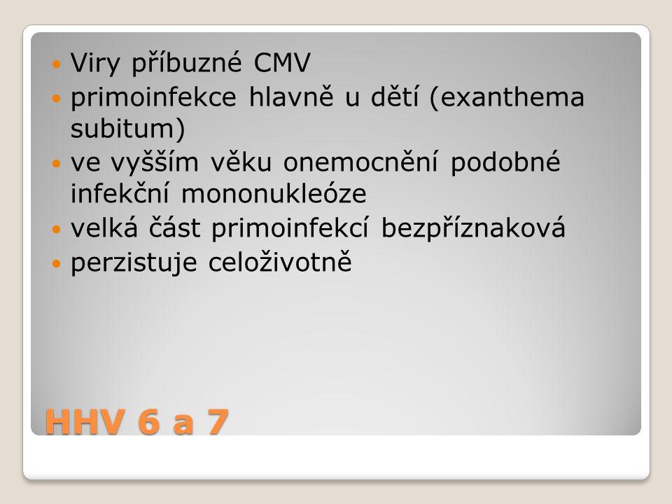 HHV 6 a 7  Viry příbuzné CMV  primoinfekce hlavně u dětí (exanthema subitum)  ve vyšším věku onemocnění podobné infekční mononukleóze  velká část
