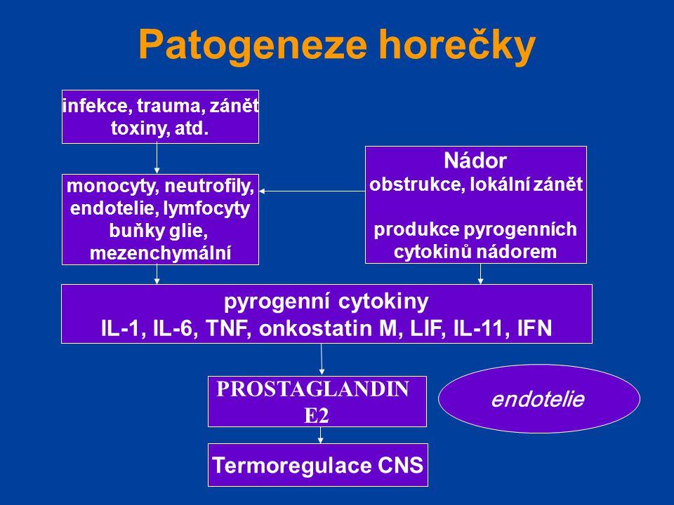 Patogeneze horečky infekce, trauma, zánět toxiny, atd. monocyty, neutrofily, endotelie, lymfocyty buňky glie, mezenchymální Nádor obstrukce, lokální z