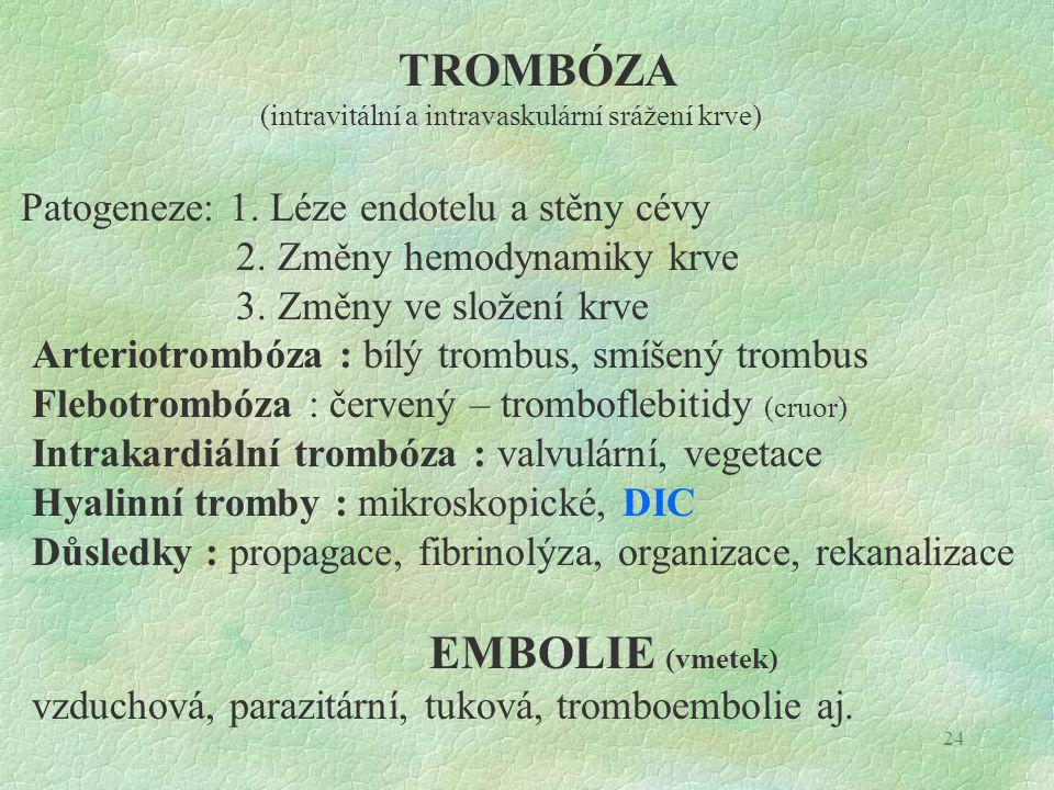 24 TROMBÓZA (intravitální a intravaskulární srážení krve) Patogeneze: 1. Léze endotelu a stěny cévy 2. Změny hemodynamiky krve 3. Změny ve složení krv