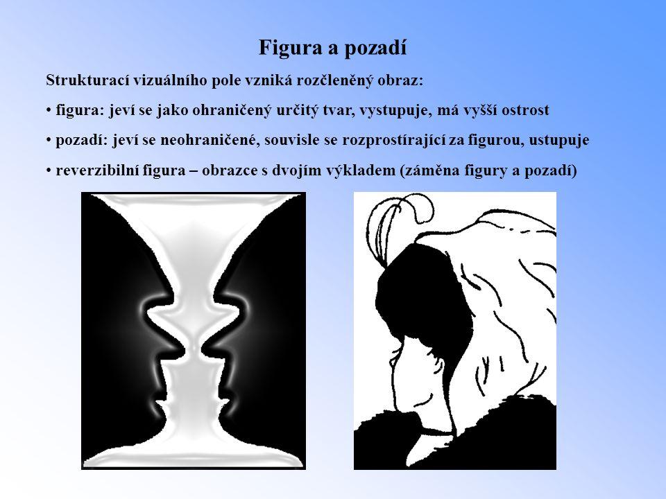 Figura a pozadí Strukturací vizuálního pole vzniká rozčleněný obraz: • figura: jeví se jako ohraničený určitý tvar, vystupuje, má vyšší ostrost • poza