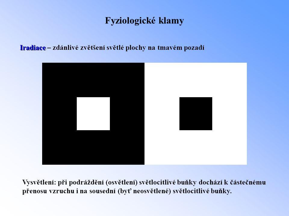 Fyziologické klamy Iradiace Iradiace – zdánlivé zvětšení světlé plochy na tmavém pozadí Vysvětlení: při podráždění (osvětlení) světlocitlivé buňky doc