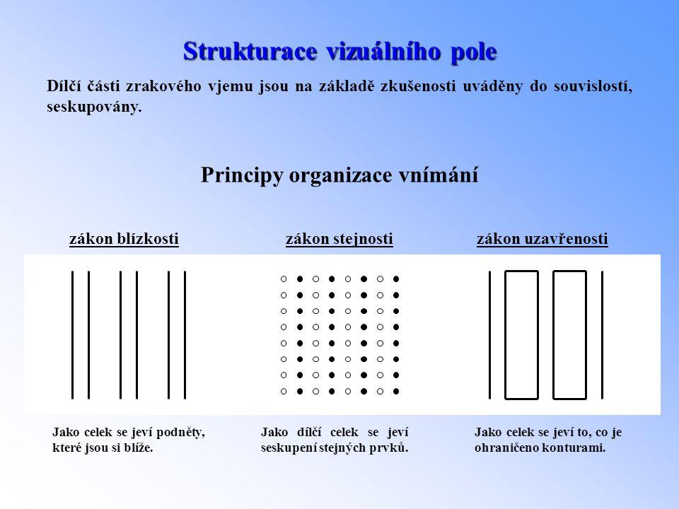 Strukturace vizuálního pole Dílčí části zrakového vjemu jsou na základě zkušenosti uváděny do souvislostí, seskupovány. Principy organizace vnímání zá