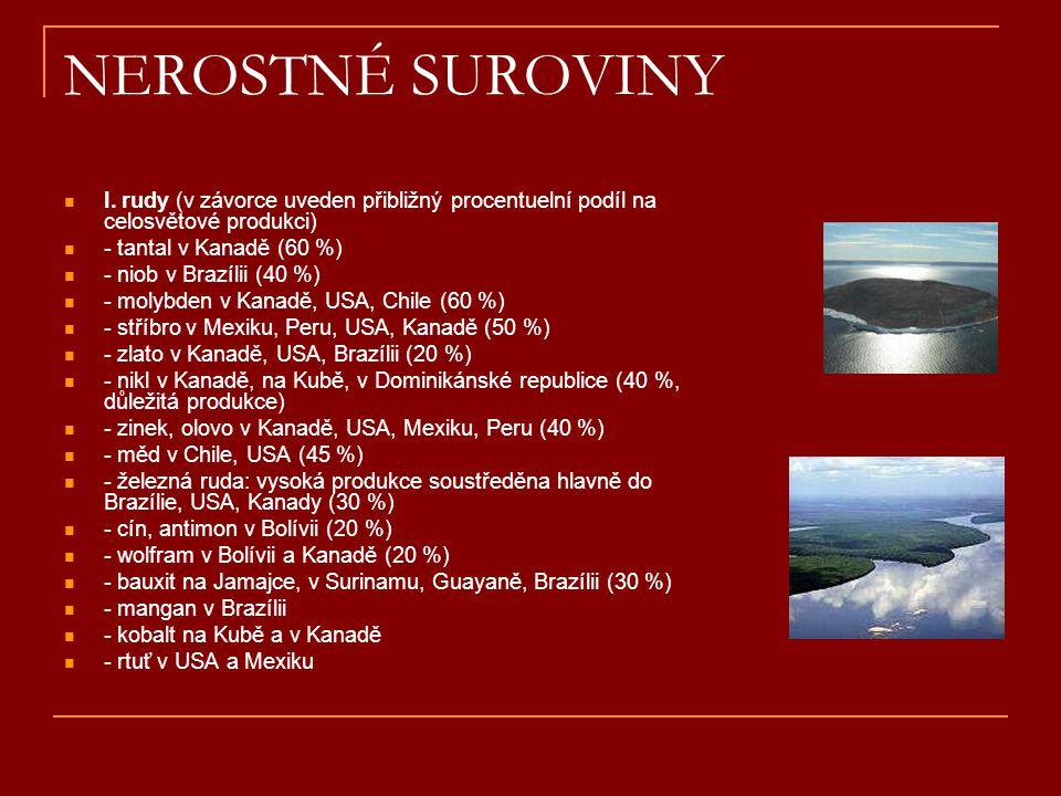 NEROSTNÉ SUROVINY  I. rudy (v závorce uveden přibližný procentuelní podíl na celosvětové produkci)  - tantal v Kanadě (60 %)  - niob v Brazílii (40