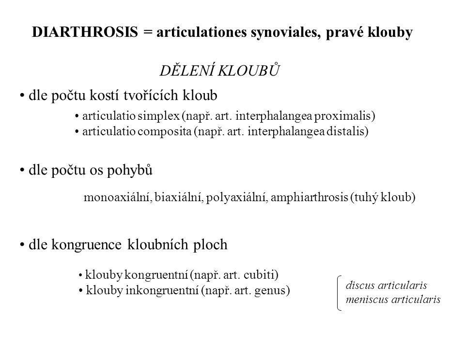 • dle počtu kostí tvořících kloub • dle počtu os pohybů • dle kongruence kloubních ploch • articulatio simplex (např. art. interphalangea proximalis)