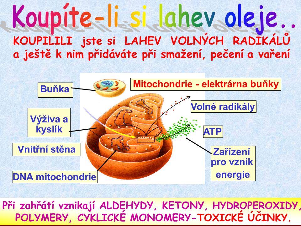 KOUPILILI jste si LAHEV VOLNÝCH RADIKÁLŮ a ještě k nim přidáváte při smažení, pečení a vaření Při zahřátí vznikají ALDEHYDY, KETONY, HYDROPEROXIDY, POLYMERY, CYKLICKÉ MONOMERY-TOXICKÉ ÚČINKY.