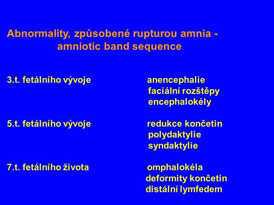 Abnormality, způsobené rupturou amnia - amniotic band sequence 3.t. fetálního vývoje anencephalie faciální rozštěpy encephalokély 5.t. fetálního vývoj