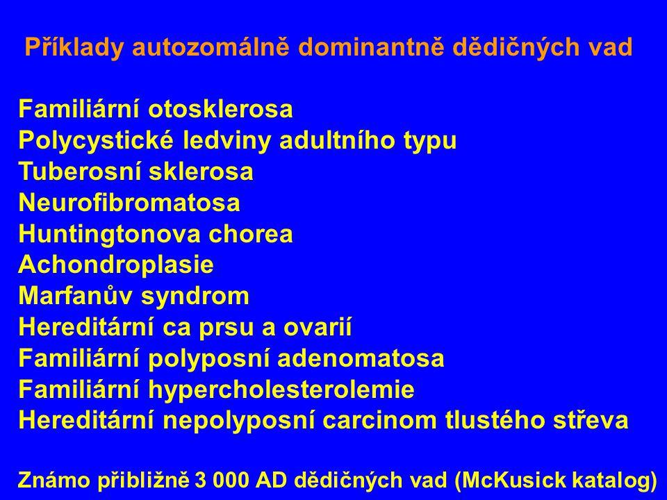 Příklady autozomálně dominantně dědičných vad Familiární otosklerosa Polycystické ledviny adultního typu Tuberosní sklerosa Neurofibromatosa Huntingtonova chorea Achondroplasie Marfanův syndrom Hereditární ca prsu a ovarií Familiární polyposní adenomatosa Familiární hypercholesterolemie Hereditární nepolyposní carcinom tlustého střeva Známo přibližně 3 000 AD dědičných vad (McKusick katalog)