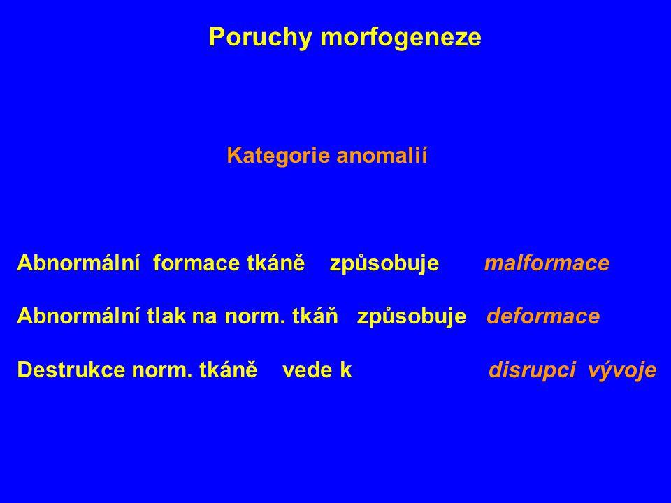 Poruchy morfogeneze Kategorie anomalií Abnormální formace tkáně způsobuje malformace Abnormální tlak na norm. tkáň způsobuje deformace Destrukce norm.