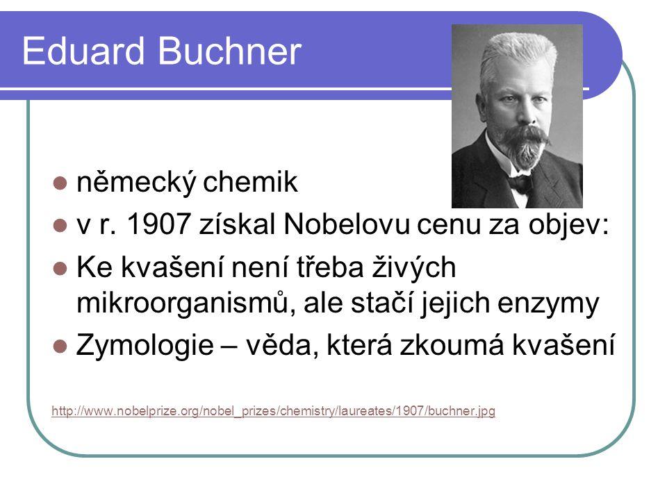 Eduard Buchner  německý chemik  v r. 1907 získal Nobelovu cenu za objev:  Ke kvašení není třeba živých mikroorganismů, ale stačí jejich enzymy  Zy