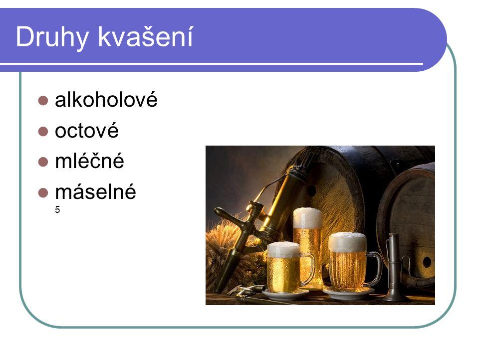 Druhy kvašení  alkoholové  octové  mléčné  máselné 5