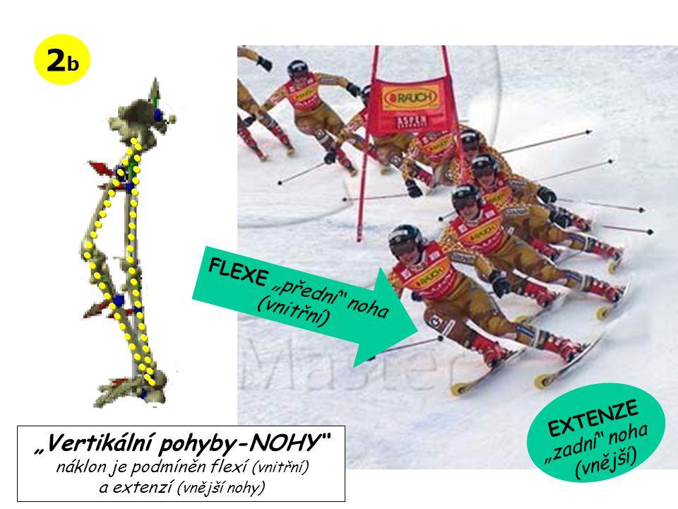 """2b2b FLEXE """" předn í"""" noha (vnitřn í ) EXTENZE """" zadn í"""" noha (vněj ší ) """"Vertikální pohyby-NOHY"""" náklon je podmíněn flexí (vnitřní) a extenzí (vnější"""