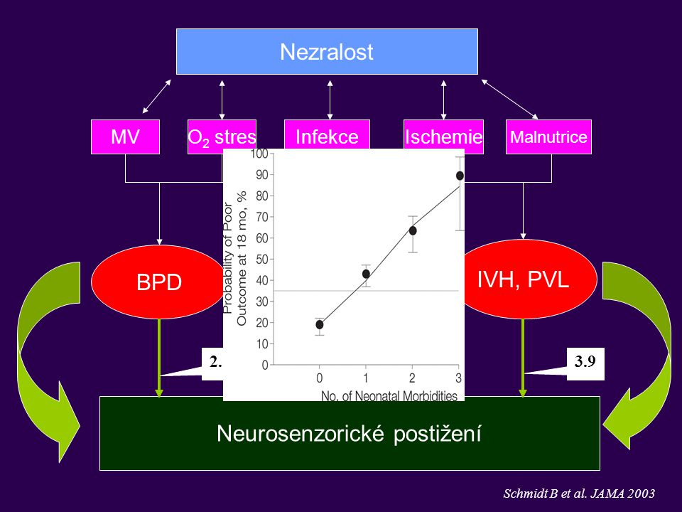 MVO 2 stresIschemie BPD ROP IVH, PVL Neurosenzorické postižení Malnutrice Infekce Nezralost Schmidt B et al. JAMA 2003 2.53.73.9 + +