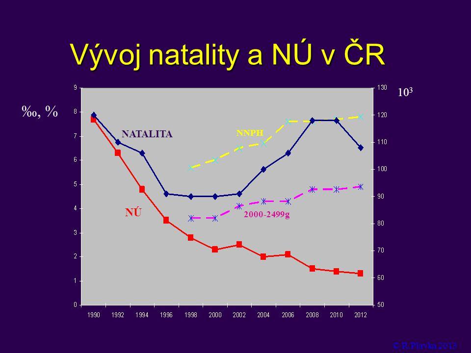 Vývoj natality a NÚ v ČR ‰, % 10 3 NATALITA NÚ 2000-2499g NNPH © R.Plavka 2013