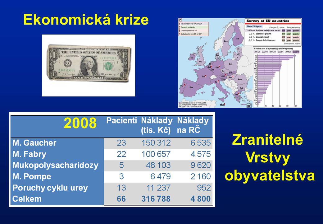 2008 Ekonomická krize Zranitelné Vrstvy obyvatelstva