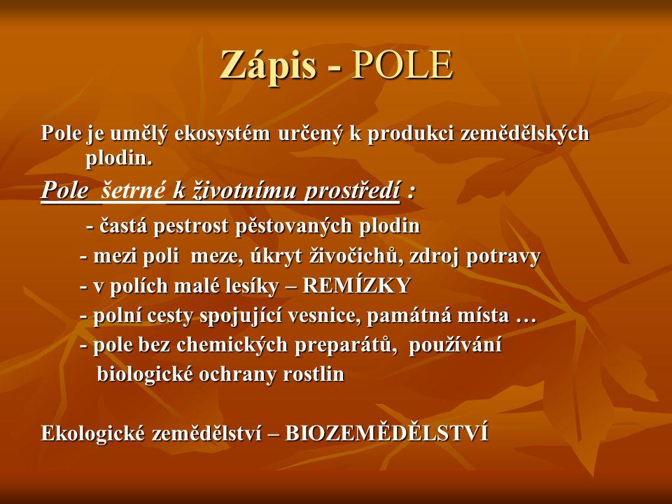 Zápis - POLE Pole je umělý ekosystém určený k produkci zemědělských plodin. Pole k životnímu prostředí : Pole šetrné k životnímu prostředí : - častá p