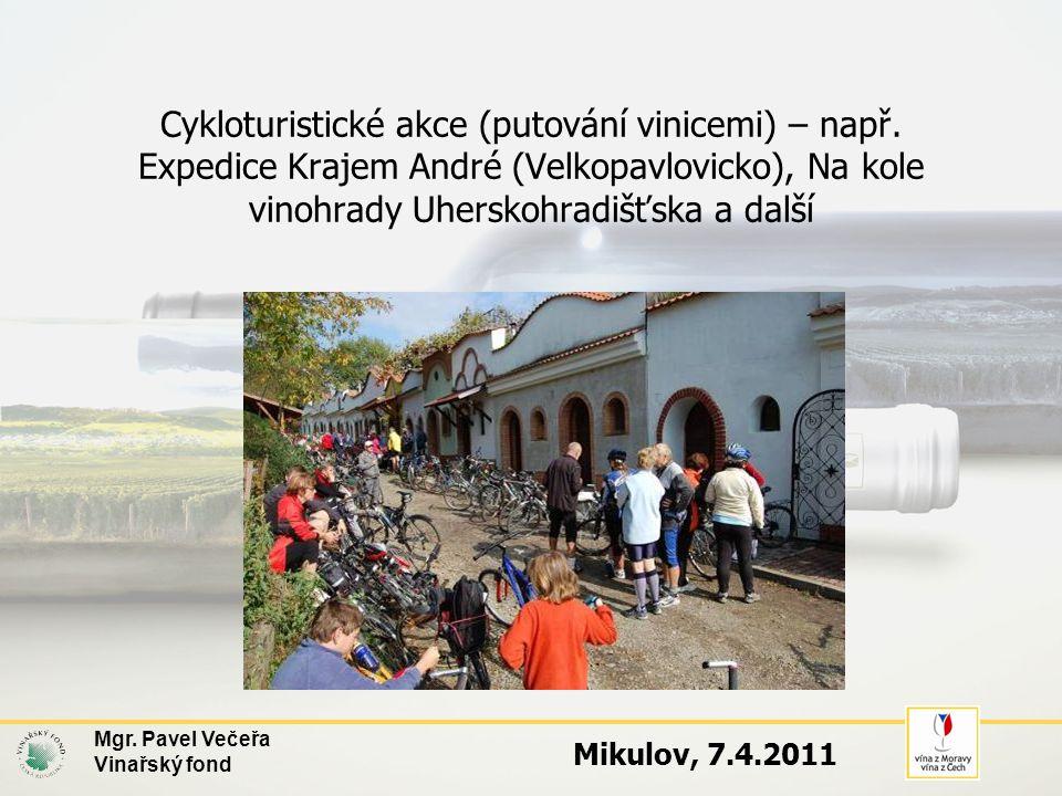 Mgr. Pavel Večeřa Vinařský fond Mikulov, 7.4.2011 Cykloturistické akce (putování vinicemi) – např. Expedice Krajem André (Velkopavlovicko), Na kole vi