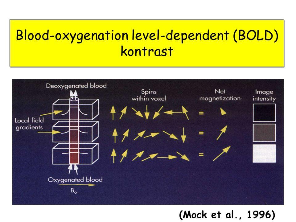 Blood-oxygenation level-dependent (BOLD) kontrast (Mock et al., 1996)