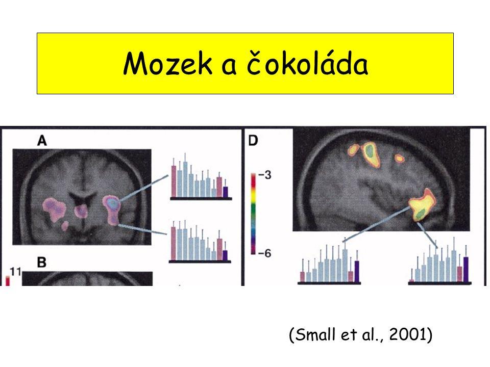 Mozek a čokoláda (Small et al., 2001)