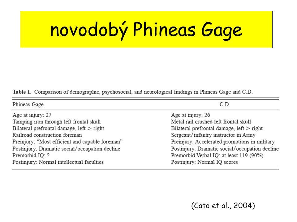 (Cato et al., 2004) novodobý Phineas Gage