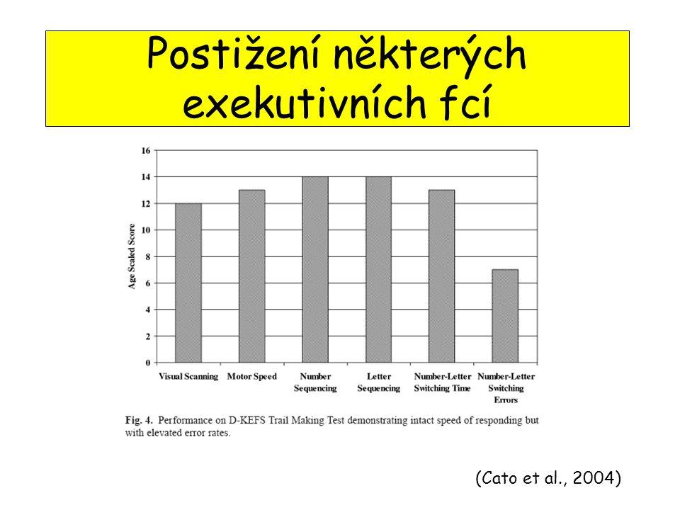 (Cato et al., 2004) Postižení některých exekutivních fcí