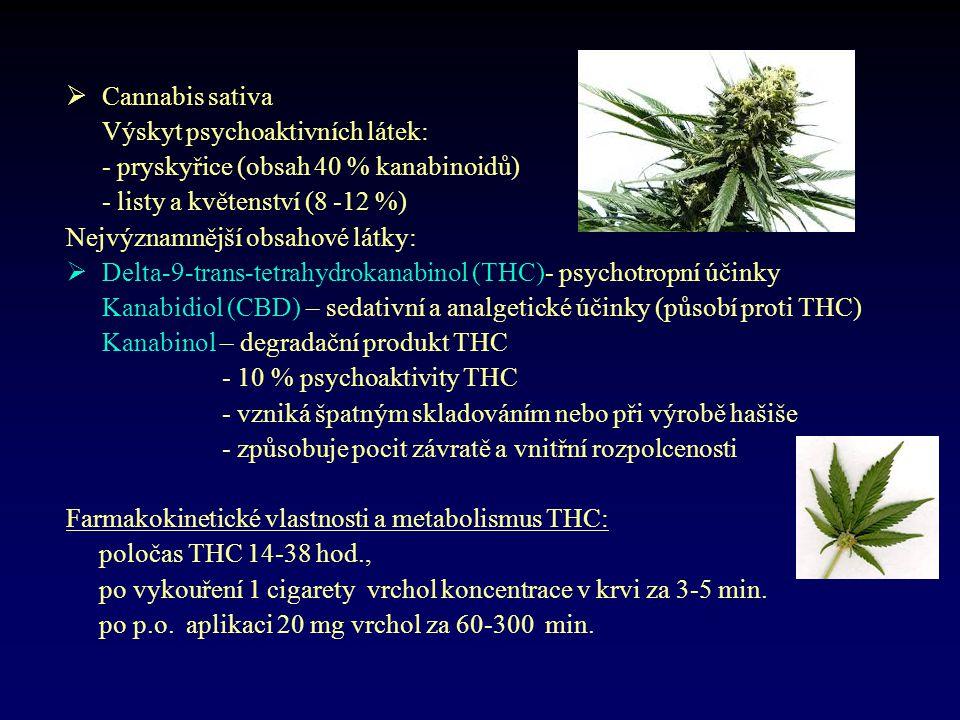  Cannabis sativa Výskyt psychoaktivních látek: - pryskyřice (obsah 40 % kanabinoidů) - listy a květenství (8 -12 %) Nejvýznamnější obsahové látky: 