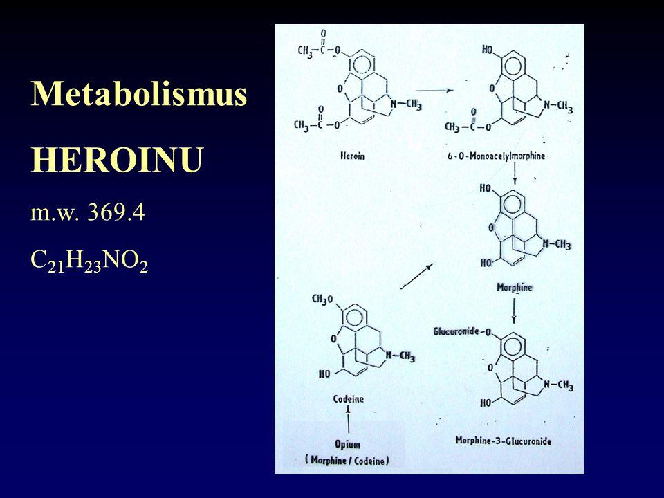 Metabolismus HEROINU m.w. 369.4 C 21 H 23 NO 2