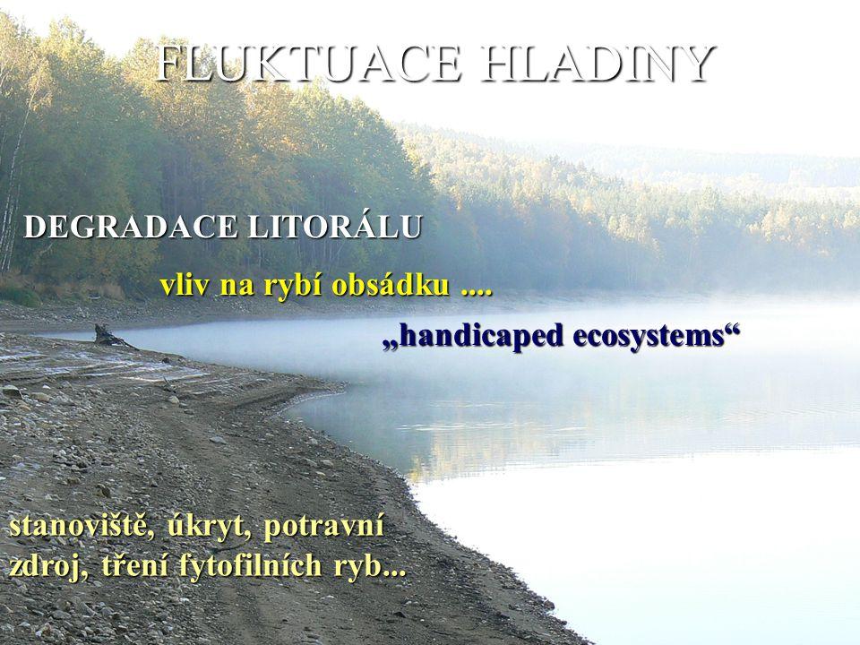 """FLUKTUACE HLADINY DEGRADACE LITORÁLU vliv na rybí obsádku.... """"handicaped ecosystems"""" stanoviště, úkryt, potravní zdroj, tření fytofilních ryb..."""