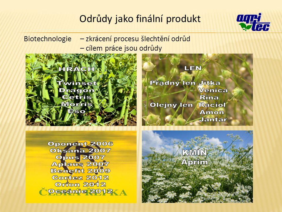 Odrůdy jako finální produkt Biotechnologie – zkrácení procesu šlechtění odrůd – cílem práce jsou odrůdy