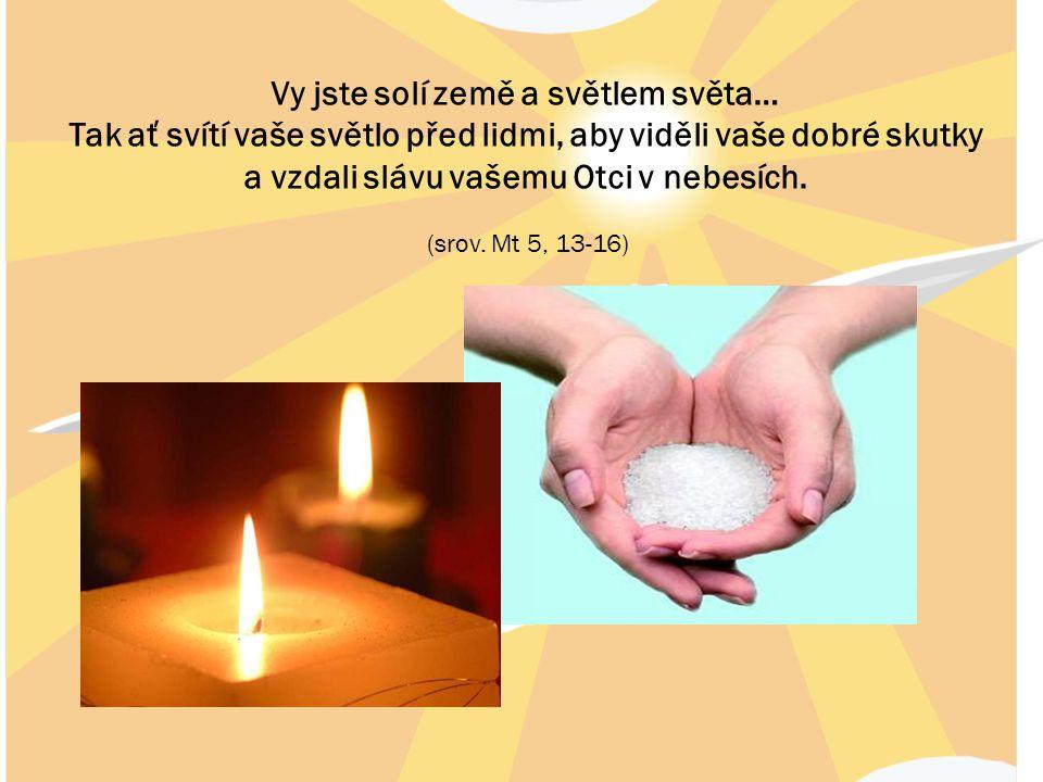 Vy jste solí země a světlem světa… Tak ať svítí vaše světlo před lidmi, aby viděli vaše dobré skutky a vzdali slávu vašemu Otci v nebesích. (srov. Mt