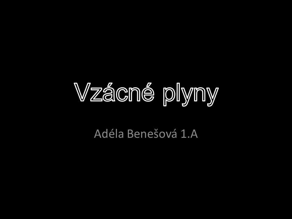 Adéla Benešová 1.A