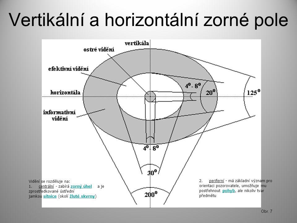 Vertikální a horizontální zorné pole Obr. 7 Vidění se rozděluje na: 1. centrální - zabírá zorný úhel a je zprostředkované ústřední jamkou sítnice (oko