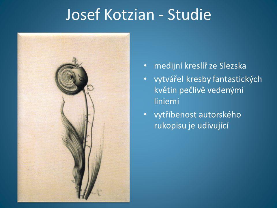 Josef Kotzian - Studie • medijní kreslíř ze Slezska • vytvářel kresby fantastických květin pečlivě vedenými liniemi • vytříbenost autorského rukopisu je udivující