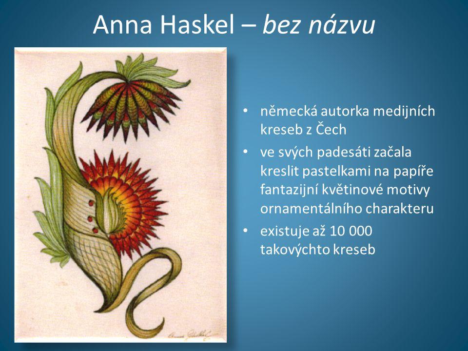 Anna Haskel – bez názvu • německá autorka medijních kreseb z Čech • ve svých padesáti začala kreslit pastelkami na papíře fantazijní květinové motivy ornamentálního charakteru • existuje až 10 000 takovýchto kreseb