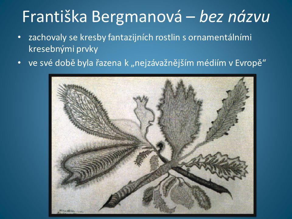 """Františka Bergmanová – bez názvu • zachovaly se kresby fantazijních rostlin s ornamentálními kresebnými prvky • ve své době byla řazena k """"nejzávažnějším médiím v Evropě"""