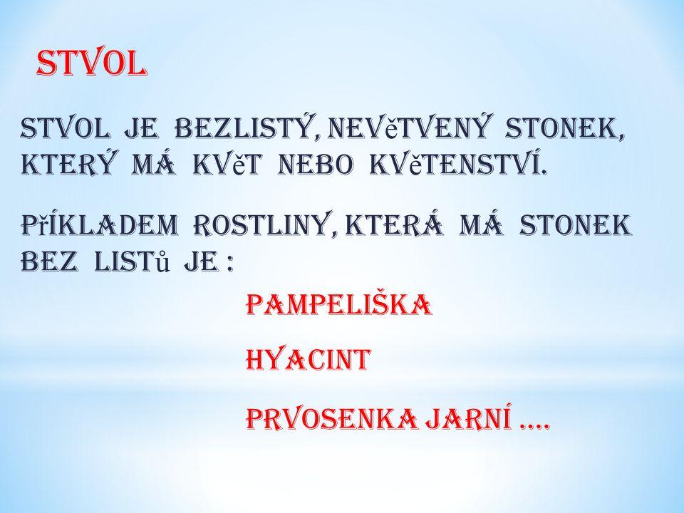 stvol Stvol je bezlistý, nev ě tvený stonek, který má kv ě t nebo kv ě tenství.