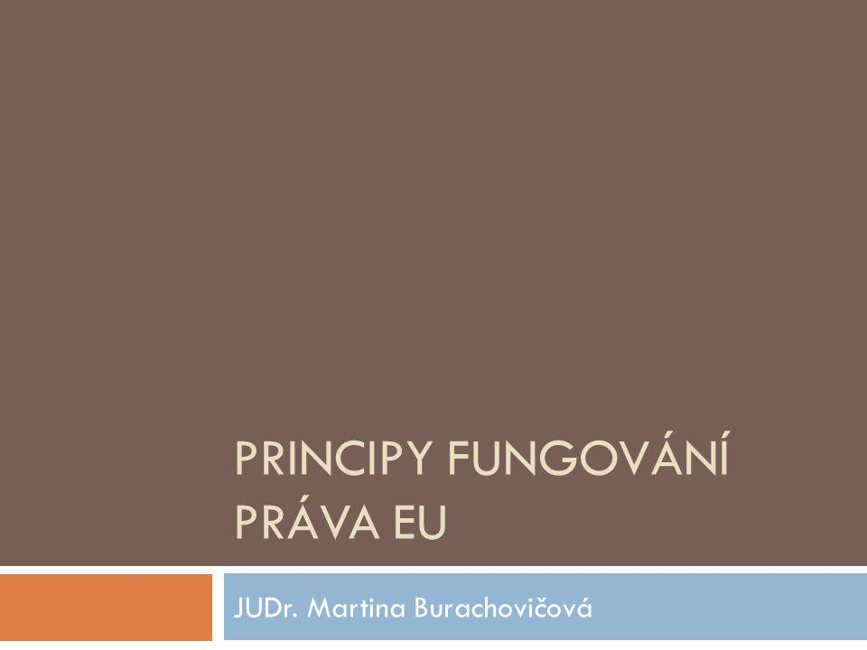 Výčet  Princip přednosti (nadřazenosti)  Princip přímého účinku  vertikální  Horizontální  Odpovědnost státu za škodu vzniklou porušením normy komunitárního práva  Princip subsidiarity  Princip proporcionality  Princip loajality členských států