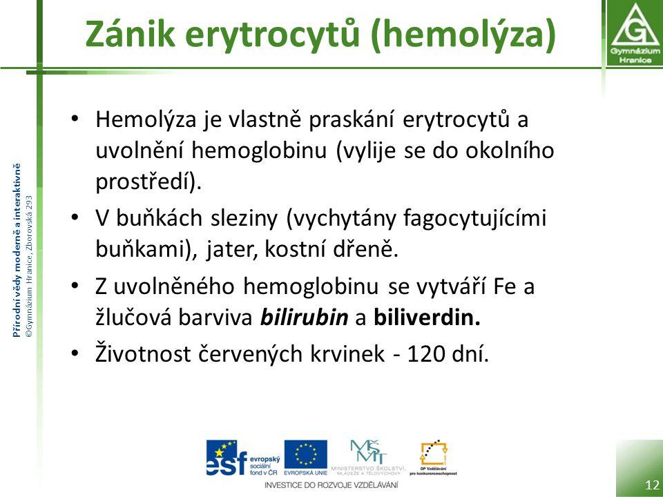 Přírodní vědy moderně a interaktivně ©Gymnázium Hranice, Zborovská 293 Zánik erytrocytů (hemolýza) • Hemolýza je vlastně praskání erytrocytů a uvolnění hemoglobinu (vylije se do okolního prostředí).