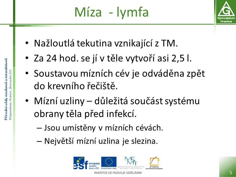 Přírodní vědy moderně a interaktivně ©Gymnázium Hranice, Zborovská 293 Míza - lymfa • Nažloutlá tekutina vznikající z TM.