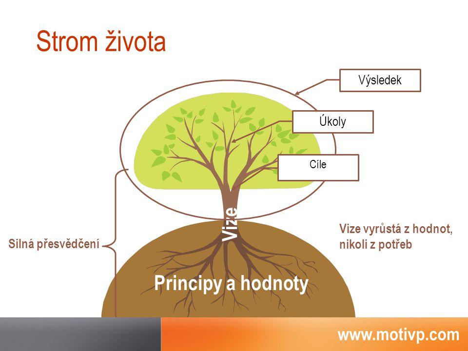 Strom života Vize Vize vyrůstá z hodnot, nikoli z potřeb Úkoly Cíle Silná přesvědčení Principy a hodnoty Výsledek
