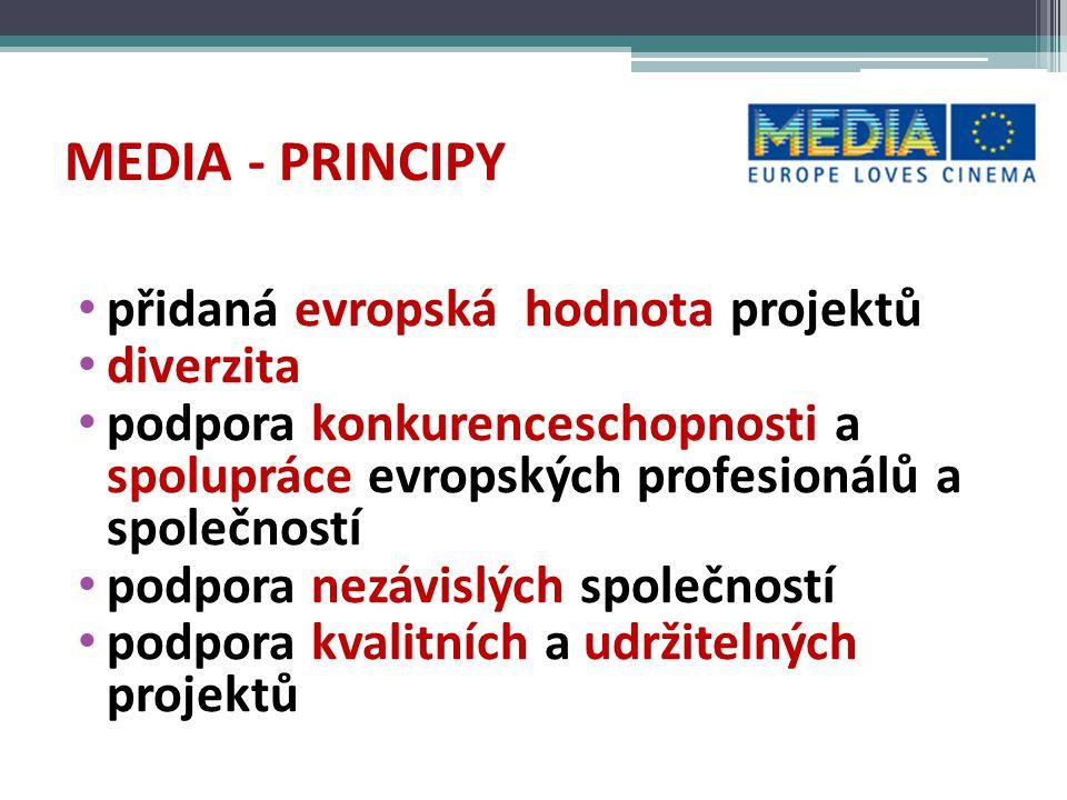 MEDIA – okruhy podpory PODPORA PRODUCENTŮ – vývoj filmů, interaktivních projektů a her, výroba TV programů, DISTRIBUCE – zahraniční evropské filmy – automatická a selektivní, prodejci (sales agents), VoD, digitální kinodistribuce, KINA – sítě kin/Europa Cinemas VZDĚLÁVÁNÍ – vzdělávací programy pro audiovizální profesionály – vývoj, marketing, financování, animace, dokument, nové technologie PROPAGACE/FESTIVALY – přístup na trh,propagace evropských AV děl, festivaly audiovizuálních děl NOVÉ TECHNOLOGIE – databáze audiovizuálního obsahu