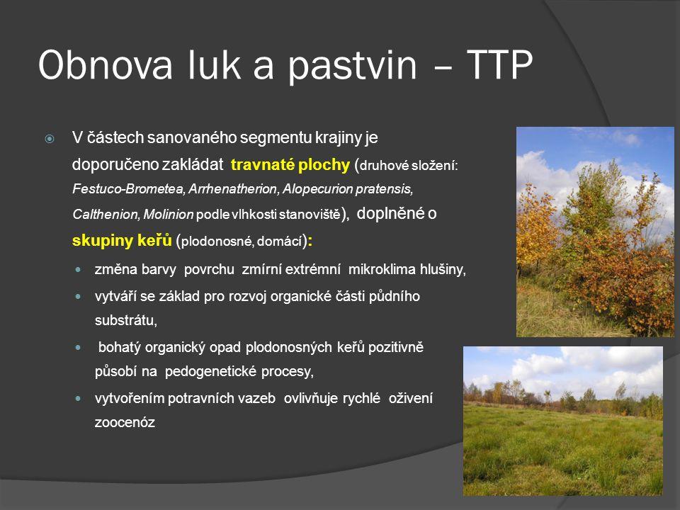 Obnova luk a pastvin – TTP  V částech sanovaného segmentu krajiny je doporučeno zakládat travnaté plochy ( druhové složení: Festuco-Brometea, Arrhena