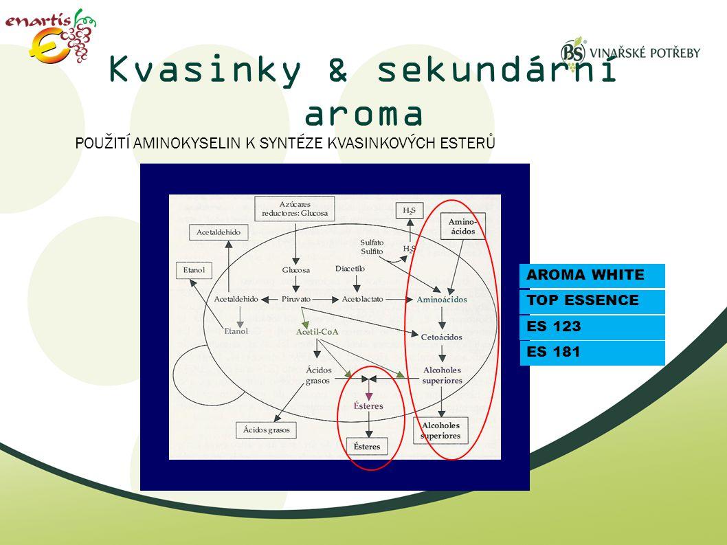 Kvasinky & sekundární aroma POUŽITÍ AMINOKYSELIN K SYNTÉZE KVASINKOVÝCH ESTERŮ ES 123 TOP ESSENCE AROMA WHITE ES 181