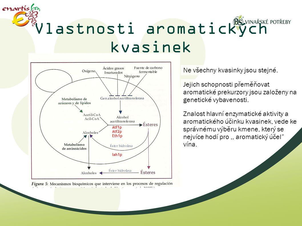 Vlastnosti aromatických kvasinek Ne všechny kvasinky jsou stejné. Jejich schopnosti přeměňovat aromatické prekurzory jsou založeny na genetické vybave