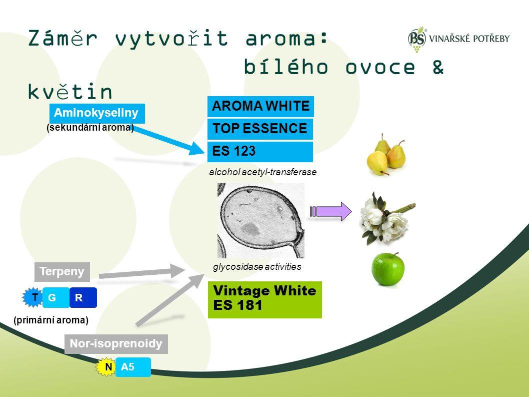 Záměr vytvořit aroma: bílého ovoce & květin Terpeny T GR Aminokyseliny Nor-isoprenoidy N A5 glycosidase activities alcohol acetyl-transferase Vintage