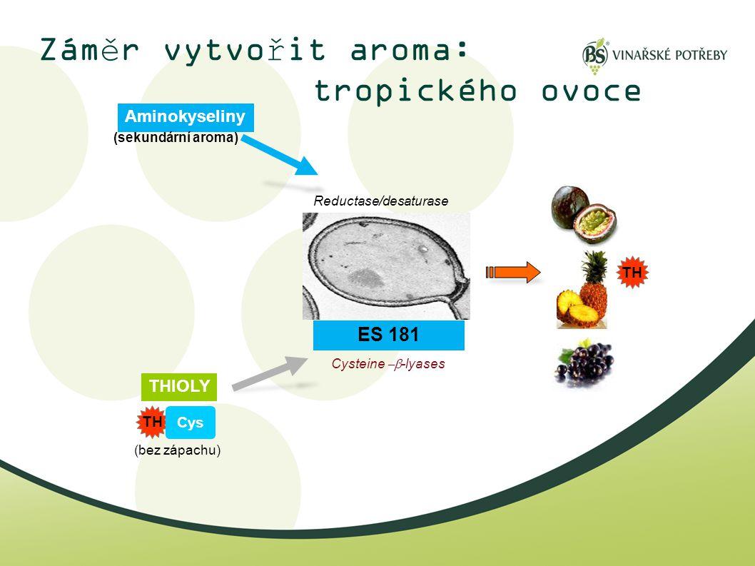Záměr vytvořit aroma: tropického ovoce Cysteine  -lyases THIOLY TH Cys TH Aminokyseliny Reductase/desaturase ES 181 (sekundární aroma) (bez zápachu