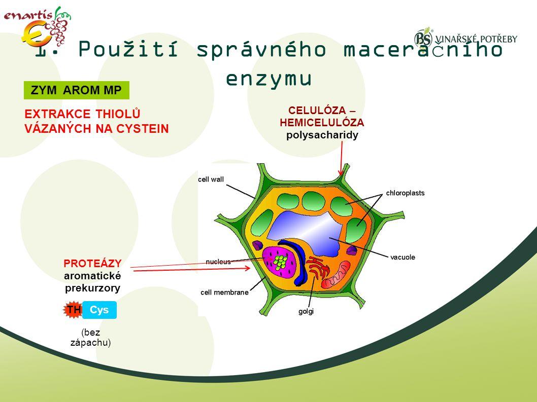 1. Použití správného maceračního enzymu CELULÓZA – HEMICELULÓZA polysacharidy PROTEÁZY aromatické prekurzory EXTRAKCE THIOLŮ VÁZANÝCH NA CYSTEIN ZYM A
