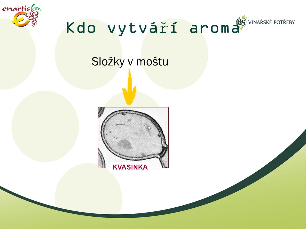 Kdo vytváří aroma Složky v moštu KVASINKA